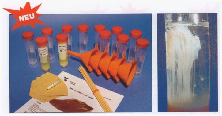 Experimentier-Kit: DNA-Gewinnung, DNA-Extraktion aus der Leber