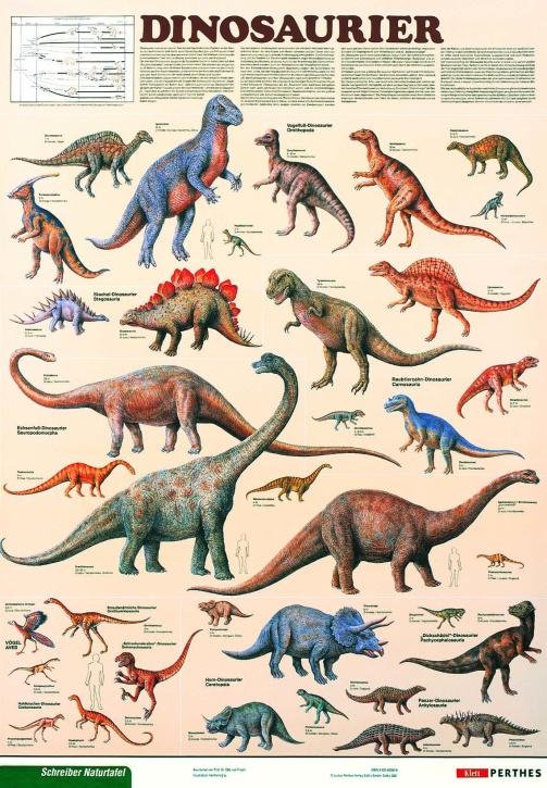 Lehrtafel Dinosaurier, als Poster