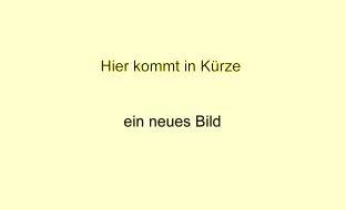 Lösungsheft zu den Bildungsstandards Deutsch Kl. 3-4