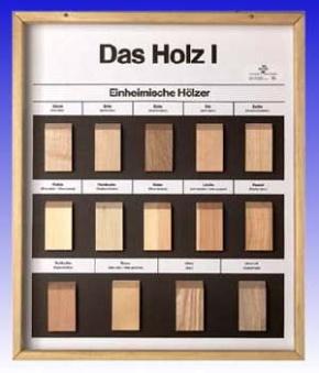 Technologie Schaukasten Rohstoff: Holz I Einheimische Hölzer