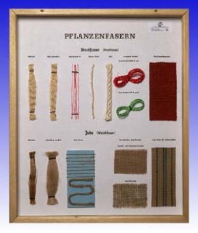 Technologie Schaukasten Fasern: Pflanzenfasern