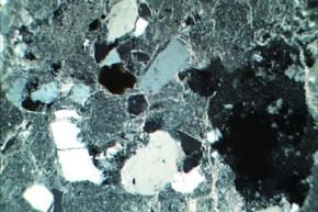 Kalkreicher Sandstein, Gesteinsdünnschliff Dauerpräparat